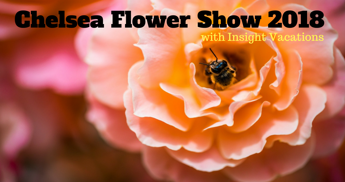 Chelsea Flower show 2018 Insight vacations